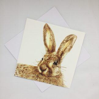 Suzi Thompson - The Curious Hare