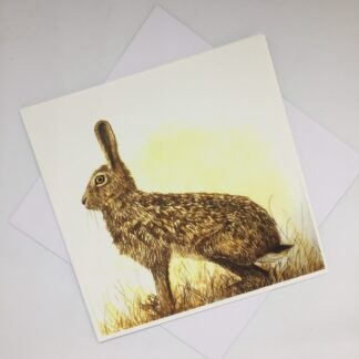 Suzi Thompson - The Watchful Hare