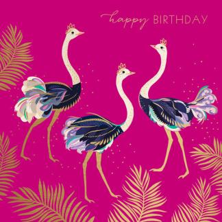 Birthday Card - Ostrich