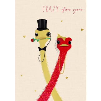 Valentines Day Cards - Crazy for You
