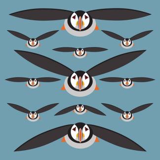 I Like Birds - Puffins Card