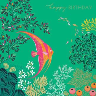 Birthday Card - Angel Fish